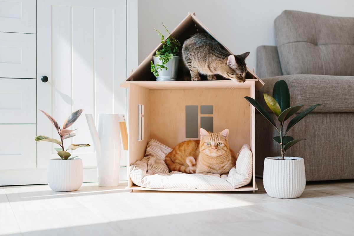 Homewell déco meuble pour chat